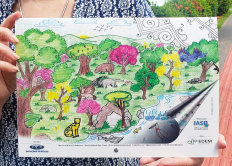 Calendários trazem desenhos de alunos das escolas rurais do Pantanal e da Serra da Bodoquena
